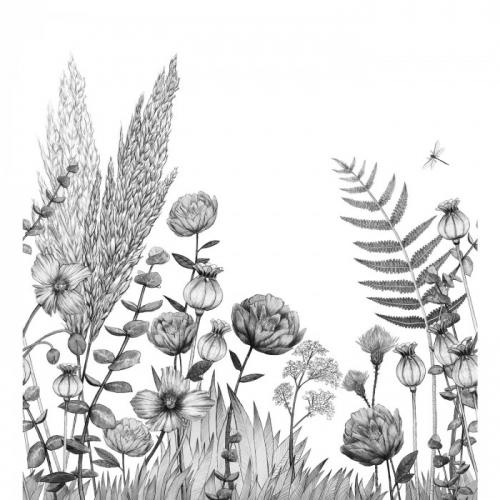 Mural de papel pintado estilo estampado floral plantas y flores en negro y tonos de gris sobre un fondo blanco Eclosion 74931120