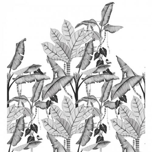 Mural de papel pintado estilo tropical hojas de banano y otras plantas tropicales en tonos de gris sobre fondo blanco Jangala 74992038