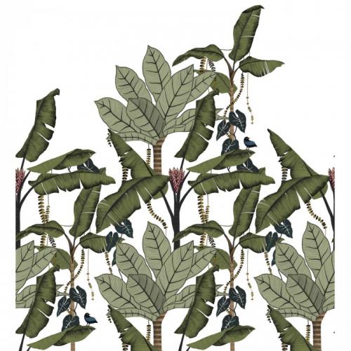 Mural de papel pintado estilo tropical hojas de banano y otras plantas tropicales en tonos verdes sobre fondo blanco Jangala 74992140