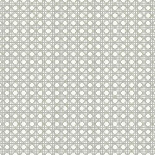 Papel pintado estilo dibujo pequeño color marfil Rattan Overlay Lattice CY1525