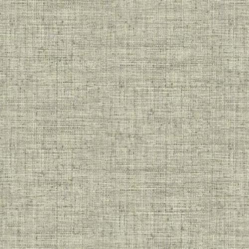 Papel pintado liso color gris Papyrus Weave CY1557
