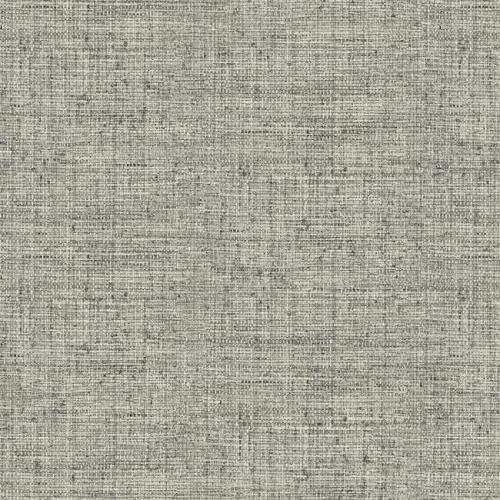 Papel pintado liso color negro y gris Papyrus Weave CY1559