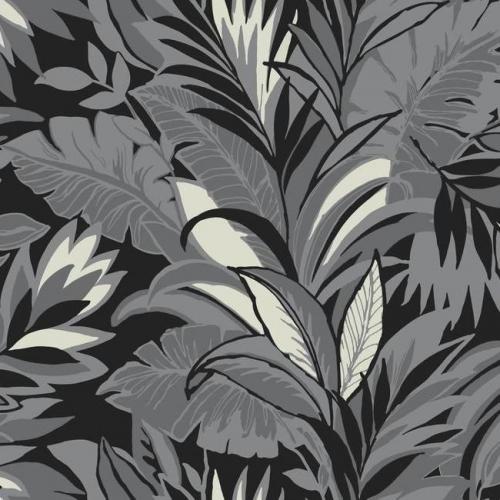 Papel pintado estilo tropical en gris y negro sobre fondo negro Palm Silhouette CY1568