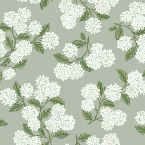Papel pintado estilo flores en color blanco sobre fondo gris Hydrangea RI5144