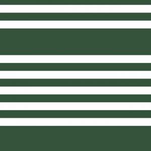 Papel pintado de estilo rayas en color verde-blanco Wide Scholarship SR1618