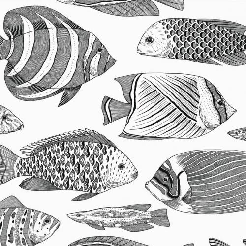 Papel pintado estilo animales marinos en tonos de color negro Wailea EC80200