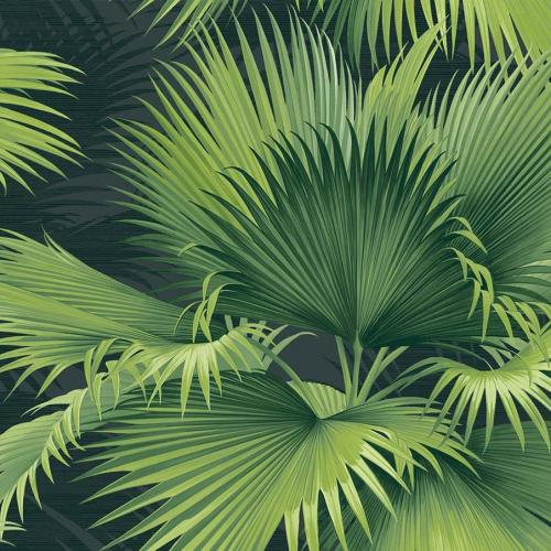 Papel pintado estilo tropical en tonos de color verde Summer Palm PC40104